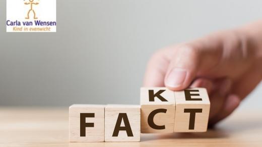 blokken met de woorden fact en fake